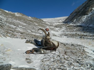 Siberian ibex hunt in Altai with Sergei Shushunov