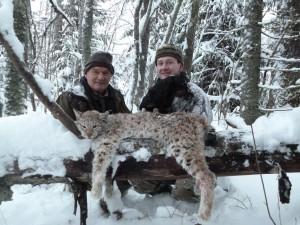 Sergei Shushunov, Lynx Hunt, St. Petersburg